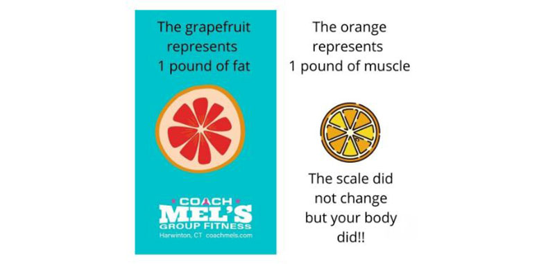 Grapefruit versus orange to compare fat and muscle